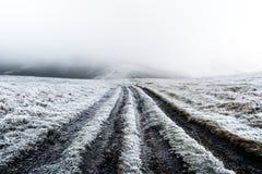 Fantastische Herbstlandschaft mit Frost stockfotos