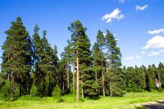 Fantastische Landschaft Lizenzfreie Stockfotos