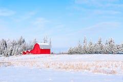 Fantastische Morgen-Landschaft mit frischem Schnee stockbild