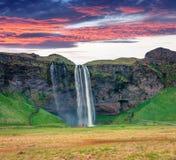 Fantastische ochtendmening van Seljalandfoss-Waterval op Seljalandsa stock foto