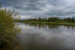 Fantastische rivier met vers groen gras in het zonlicht Royalty-vrije Stock Afbeelding