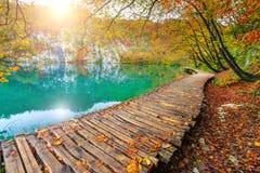 Fantastische touristische Bahn im bunten Herbstwald, Plitvice Seen, Kroatien Lizenzfreie Stockfotografie