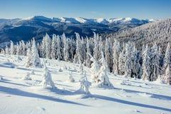 Fantastische Winterlandschaft in den Bergen von Ukraine Stockbilder