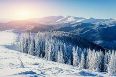 Fantastische Winterlandschaft in den Bergen von Ukraine Stockfotografie