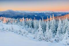 Fantastische Winterlandschaft Magischer Sonnenuntergang in den Bergen ein eisigen Tag Am Vorabend des Feiertags Die drastische Sz Stockfoto