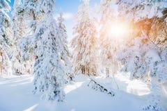 Fantastische Winterlandschaft Magischer Sonnenuntergang in den Bergen ein eisigen Tag Am Vorabend des Feiertags Die drastische Sz Lizenzfreies Stockfoto