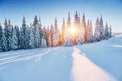 Fantastische Winterlandschaft Magischer Sonnenuntergang in den Bergen ein eisigen Tag Am Vorabend des Feiertags Die drastische Sz Stockfotografie