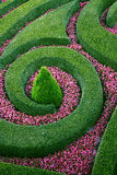 Fantastischer Flowerbed Stockfotografie