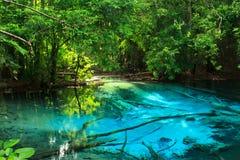 Fantastisk blåttfärg sjö Arkivbild