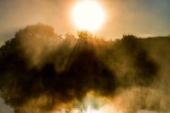Fantastisk dimmig flod med trevlig reflexion och strålar av ljus i solljuset Royaltyfri Fotografi