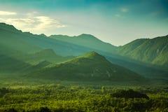 Fantastisk grön dimmig dal med solstrålar som täckas med skogen och berg i bakgrunden royaltyfri fotografi