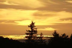 Fantastisk härlig solnedgång Fotografering för Bildbyråer