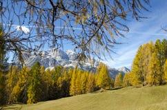 Fantastisk höst i Dolomitesfjällängarna, Italien Arkivfoto