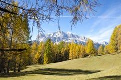Fantastisk höst i Dolomitesfjällängarna, Italien Arkivbild