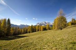 Fantastisk höst i Dolomitesfjällängarna, Italien Arkivfoton