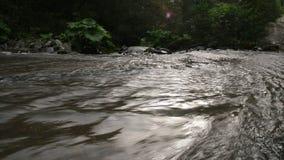 Fantastisk krökning för ström för bergChvizepse flod i höst, Medoveevka, Kaukasus arkivfilmer