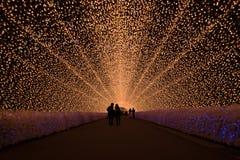 Fantastisk ljus tunnel Arkivfoton