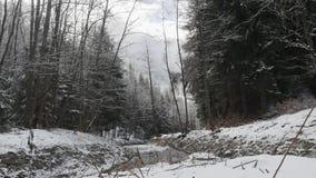 Fantastisk platssikt av den snabba flödande floden med aktuellt skapande skum för hastighet, i att förbluffa vinterskogen med trä stock video