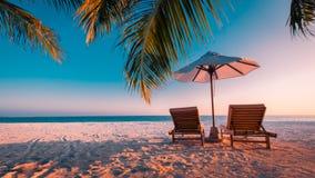 Fantastisk semester- och ferie- och loppdestinationsbakgrund Solnedgångstrandplats med solstolar och palmträd fotografering för bildbyråer