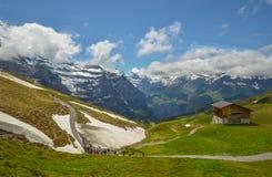 Fantastisk sikt av schweiziska fjällängar royaltyfria bilder