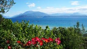 Fantastisk sikt av sjön Garda från parkera Parco Pubblico Tomelleri i den Sirmione staden, Italien Royaltyfri Bild