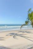 Fantastisk sikt av stränderna nära Itacare Royaltyfri Fotografi