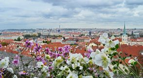 Fantastisk sikt på den Prague staden Royaltyfria Bilder