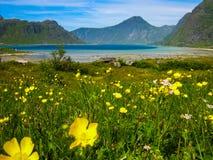 Fantastisk sjö nära nordpolen Arkivbilder