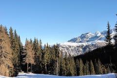 Fantastisk skönhet av berglandskapet, ett paradis för skidåkare - dolomitesna, Pinzolo, Italien, Europa royaltyfri bild