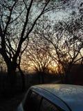 fantastisk solnedgång royaltyfri foto