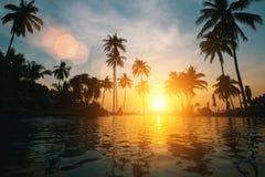 Fantastisk solnedgång på den tropiska stranden med konturer av palmträd Natur royaltyfria bilder