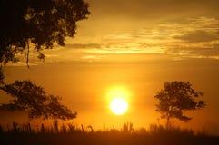 fantastisk soluppgång Fotografering för Bildbyråer