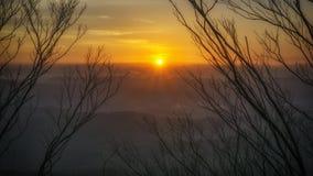 Fantastisk soluppgångsikt med filialkonturn Royaltyfri Fotografi
