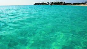 Fantastisk strand för karibiskt hav för skönhet Aruba ö härlig gjord naturvektor för bakgrund stock video