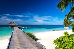 Fantastisk strand i Maldiverna Moln för blå himmel och avslappnande seascape royaltyfri bild