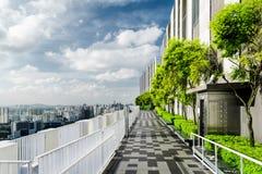 Fantastisk takträdgård i Singapore Den utvändiga terrassen med parkerar royaltyfri fotografi