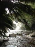 Fantastisk vattenfall Arkivfoton