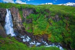 Fantastisk vattenfall på den södra sidan av Island royaltyfria foton