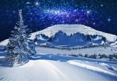 Fantastisk vinterstjärnljusnatt Fotografering för Bildbyråer