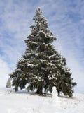 Fantastisk vinterunderland, snögubbe Fotografering för Bildbyråer