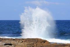 fantastisk wave Fotografering för Bildbyråer