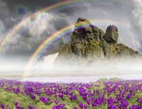 Fantastiska blommor - krokusar Royaltyfria Foton