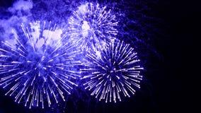 Fantastiska fyrverkerier blommar på natthimlen Ljust blå firewo arkivbild