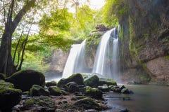 Fantastiska härliga vattenfall i djup skog royaltyfria bilder