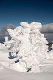 Fantastiska snowdiagram på trees Arkivbild