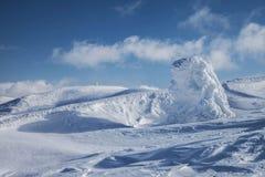 Fantastiska snowdiagram på trees Royaltyfri Fotografi