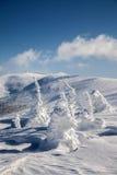 Fantastiska snowdiagram på trees Arkivfoto
