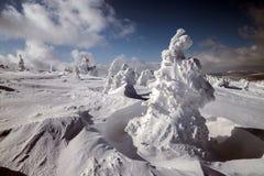 Fantastiska snowdiagram på trees Royaltyfri Bild
