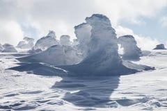 Fantastiska snowdiagram på trees Arkivbilder
