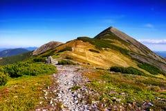 Fantastiska soliga kullar under blå himmel för morgon dramatisk liggande royaltyfria bilder